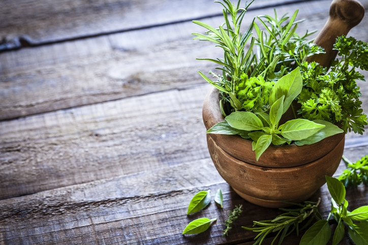 Take care of your lungs with medicinal plants | SHA Magazine
