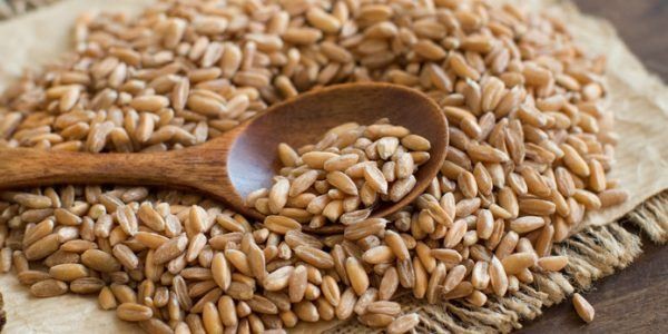 risotto, nutrition, farro